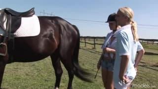 Blond Cat i Yasmine Gold liżą cipki przy koniu