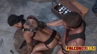 Geje - muskularni wojownicy lubią seks